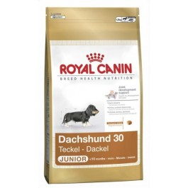 Royal Canin Teckel 30 Junior - 1,5 kg